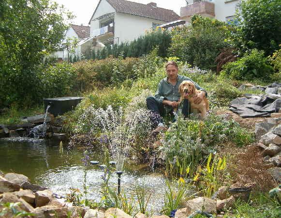 Schwimmteich Garten Schwimmteich Planen Schwimmteich Garten Anlegen